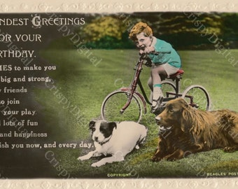 Vintage Birthday Card Printable Happy Birthday Vintage Postcard Boy on Tricycle w/Dogs Digital Download
