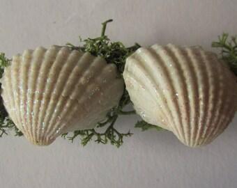 Seashell and moss hair clip