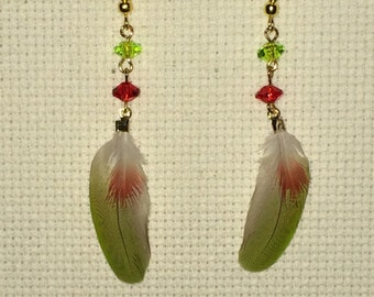Pineapple Green Cheek Conure Feather Earrings, Cruelty Free, Naturally Moulted Feathers.