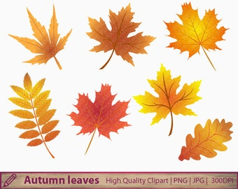 Autumn leaves clipart, autumn leaves clipart, commercial use, scrapbooking, digital instant download, jpg png 300dpi