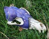 Constellation, Spooky, Dark, Gothic, Stars, Coyote, Real Skull, Painted, Unique Gift, One of a Kind, Custom Art Design by JayneStrange.