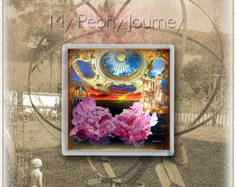 Collection of Art Prints on Canvas - acrylic framed (My Peony Journey) - or coasters