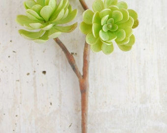 Artificial Succulents, Hens and Chicks, Green