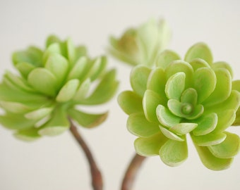 Artificial Succulent, Hens and Chicks, Green 10 Inch