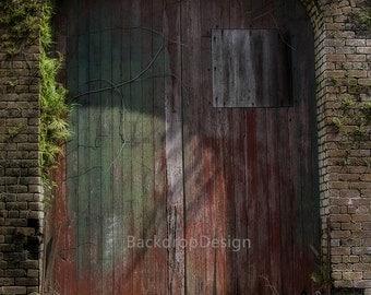 Old Wood Door Backdrop - rustic wood door - Printed Fabric Photography Background h00114
