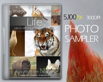 Animals Royalty Free Stock Photos - Promo Sampler Species Images