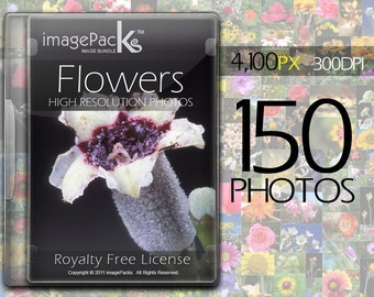 Flowers Royalty Free Stock Photos Pack