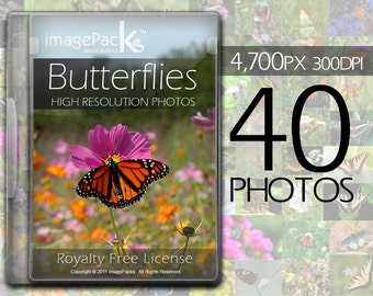 Butterfly Royalty Free Image Pack - Butterflies Stock Photos Bundle