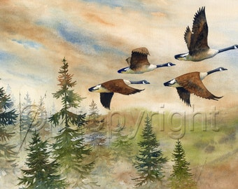 Giclée, watercolor, watercolor, goose, goose
