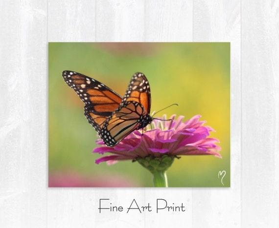 Butterfly Fine Art Print - Monarch Butterfly Morning Break! Flower Fine Art Prints and Butterfly Wall Art.