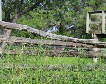 Old Fence Photo #2