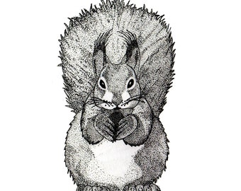 Fat Squirrel || A5 Print