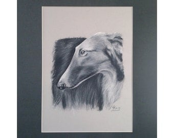 Borzoi Dog Drawing