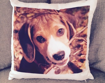 Beagle Puppy Cushion - Pillow