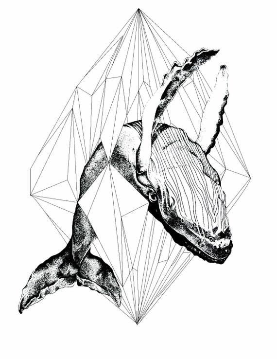 Line Art Etsy : Items similar to geometric whale art print on etsy