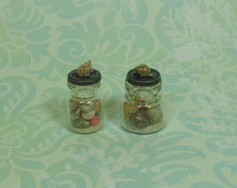 Dollhouse Miniature Pair of Bottles with Real Sea Shells
