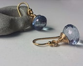 Little Blue Earrings with Gold