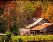 Missouri Landscape, Fall Photography, Autumn Photos, Rural Barn Wall Art, Fall Foliage, Warm Colors, Colorful Photography, Orange Color