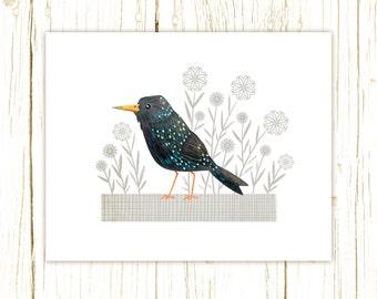 European Starling Print -- bird art -- colorful bird art 52 birds stephanie fizer coleman illustration