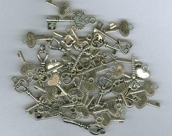Set 45 Silver Skeleton Key Charm Assortment of Key Findings Mix