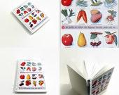 4x6 Spiral Notebook - School Chart: Garden Fruits and Vegetables