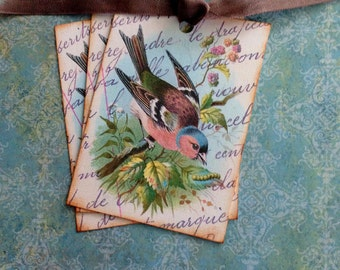 Bird Tags - Vintage Bird Tags - Vintage Chaffinch Bird Tags - Baby Shower, Wedding wish tags - Set of 3