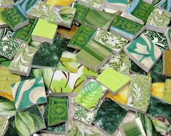 Mosaic Tiles - 240 ASSoRTeD GREEN HaND CuT TiLES - Broken China Tiles