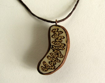 Fine Art Mitochondrion Pendant Necklace Pyrography Holly - Ilex sp - Wood Carving by Tanja Sova