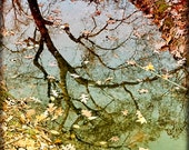 Fall Reflection Photograph, Tree Branches, September Art, Stream, Creek, Earth, Tones, Leaves, Home Decor, Photography - A Day of Reflection
