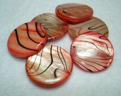 Coral Black Striped Flat Round Shell Beads (Qty 6) - B2900