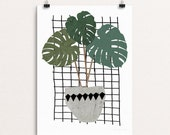 Monstera Two Sizes - Print Or Poster