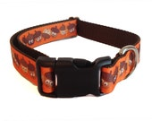 Acorns Fall Dog Collar, Martingale, Leash or Harness