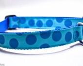 Turquoise Polka Dot Dog Collar / Turquoise Dot / Blue Dots / Custom Dog Collat