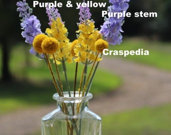Craspedia 5 mini and 2 of each color flower stems - yellow & lavender and just lavender