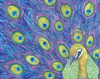 "SALE Get In Line - Peacock - Birt Art - Art Print - Wall Art - Nature - Wildlife - Digital Print x 9x12"""