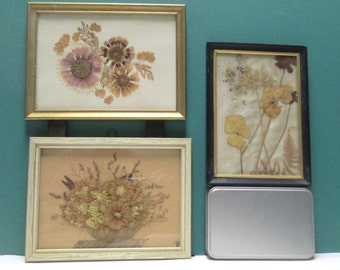 Pressed Flower Art Framed Vintage Dried Wildflowers Botanicals Frames Instant Collection Wall Hanging Floral Collage Home Decor