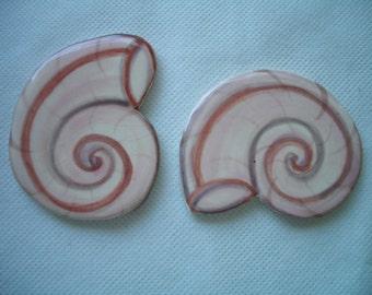 F2 - NAUTILUS Shells - Ceramic Mosaic Tiles