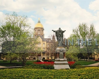 READY TO SHIP - Golden Dome at University of Notre Dame and Spring Tulips - Fine Art Photograpy- 12x6 panoramic, other sizes available- fPOE