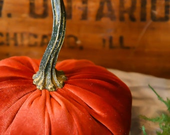 Scented Velvet Pumpkin, HARVEST RUST
