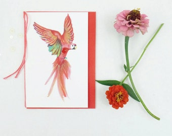 Parrot Blank Card