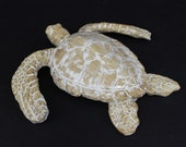 Small Hand made Ceramic Sea Turtle Wall hanging/coffee table decor by Shayne Greco Beautiful Mediterranean Pottery