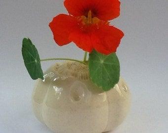 Cream White Sea Pod Vase for One Flower Ceramic Vessel 2