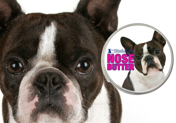 Boston Terrier NOSE BUTTER® All Natural Moisturizing Balm for Dry or Crusty Dog Noses 1 oz. Tin with Dapper Boston on Label in Gift bag