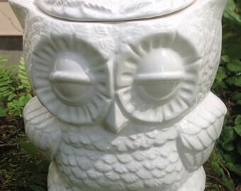 Ceramic owl planter, treat jar, utensil holder, white, opaque