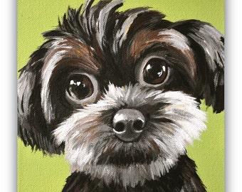 custom painted pet portrait size 6x6 canvas sample