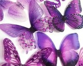 transparent purple butterfly - purple butterfly - pink adhesive butterfly - 3D adhesive butterfly - wal butterfly - Uniqdots on Etsy CODEA1