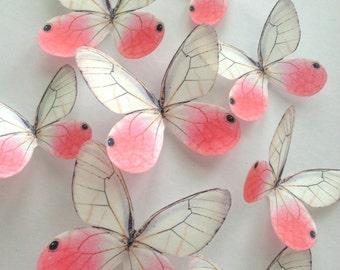 white blush wedding cake decoration - white edible butterfly - blush edible butterfly - cupcake topper - white butterfly - Uniqdots CODE001