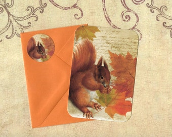 Autumn, Greeting Cards, Fall Colors, Squirrel, Stickers