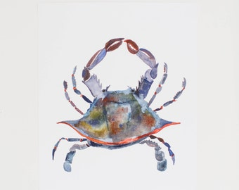 Blue Crab  - 8 x 10 - Watercolor - Illustration - Art Print