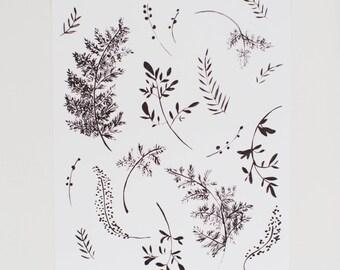 Black and White Fern Art Print  - 8 x 10